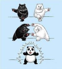 panda worrior