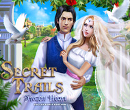 Secret Trails: Frozen Heart Collector's Edition logo