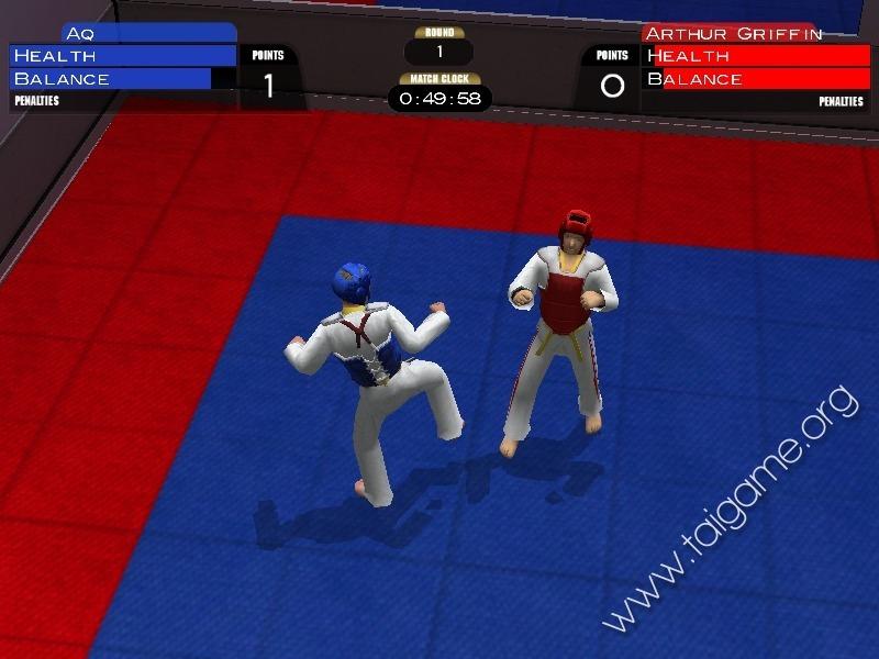 Opiniones sobre Taekwondo Game