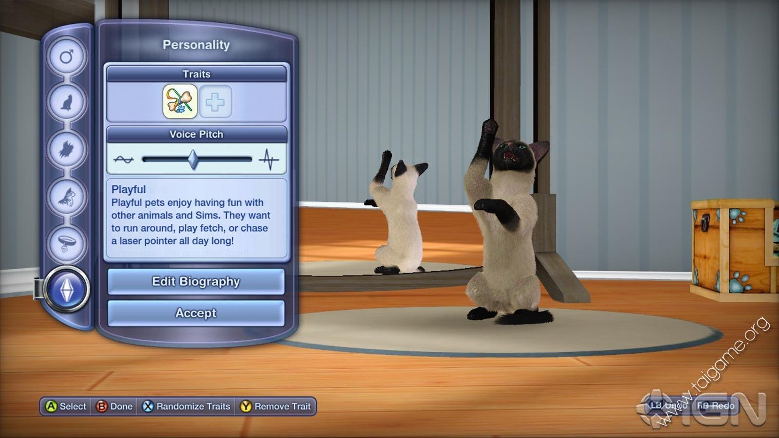 Warrior Cat Games Free No Download