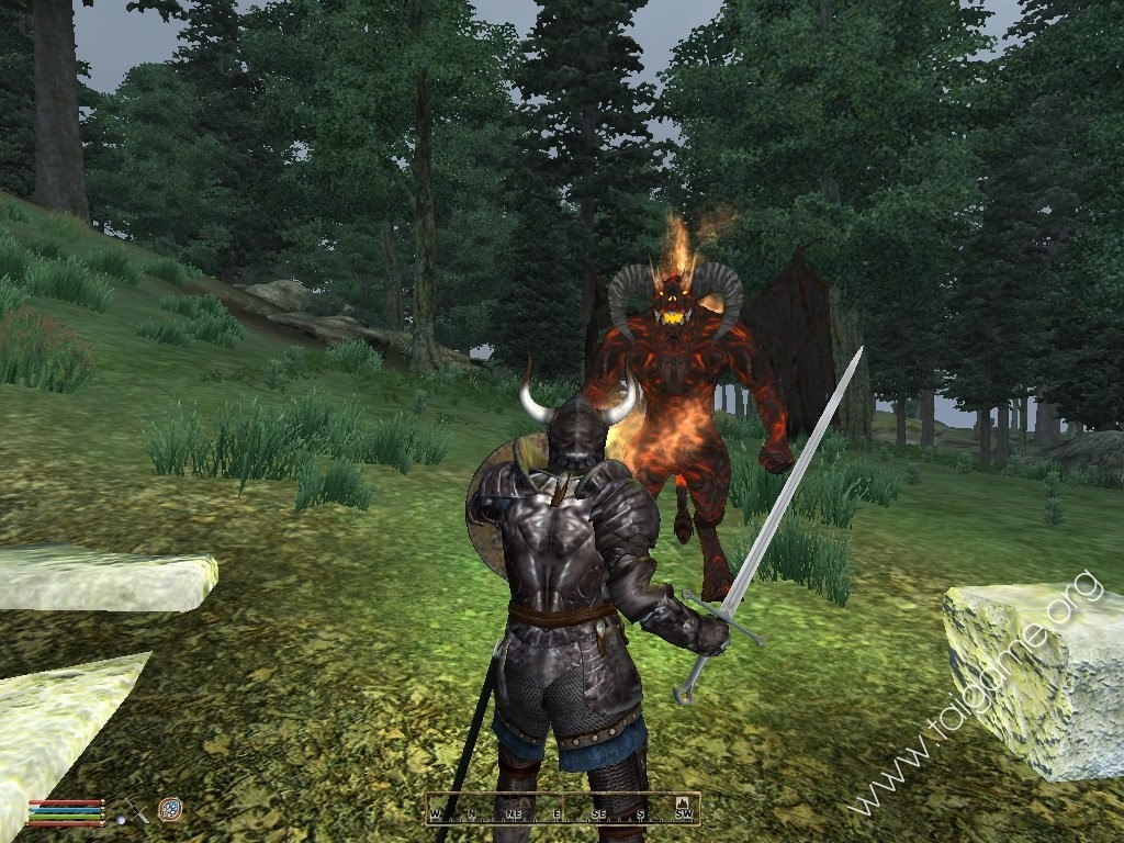 The elder scrolls iv oblivion game of the year edition c 225 nh