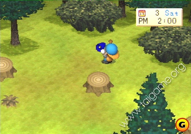download game harvest moon back to nature boy and girl for pc