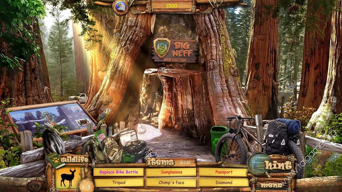 Vacation Adventures Park Ranger 2 Download Free Full