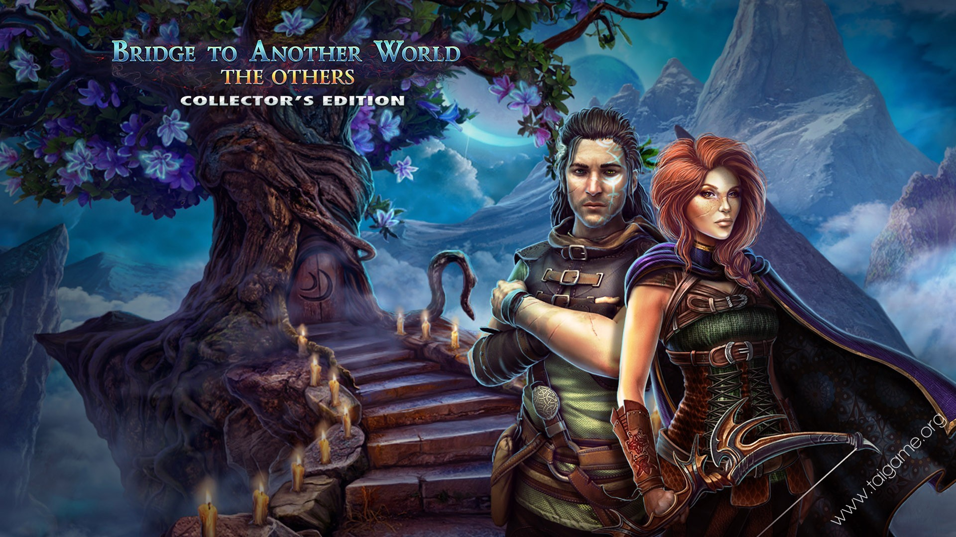 Bridge to Another World: The Others Collector's Edition ...