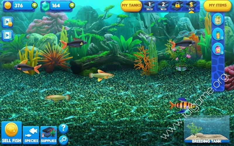 Fish Tycoon Free Game Full Download - Free PC Games Den