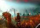The Witcher 2: Assassins of Kings picture10