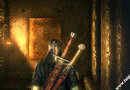 The Witcher 2: Assassins of Kings picture11