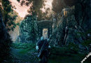 The Witcher 2: Assassins of Kings picture15