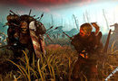 The Witcher 2: Assassins of Kings picture3