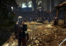 The Witcher 2: Assassins of Kings picture7