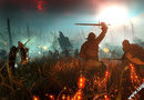 The Witcher 2: Assassins of Kings picture8