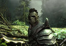 The Elder Scrolls V: Skyrim picture12