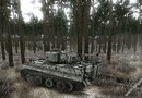 Achtung Panzer: Operation Star picture11