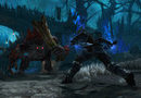 Kingdoms of Amalur: Reckoning - Collection picture12