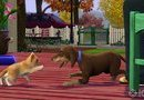 The Sims 3: Pets picture6