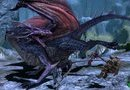 Dragon Age: Origins picture20
