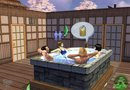 The Sims 2: Ultimate Collection picture8
