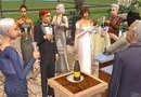 The Sims 2: Celebration! Stuff picture10