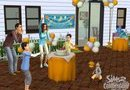 The Sims 2: Celebration! Stuff picture4