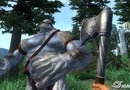 The Elder Scrolls IV: Oblivion - Game of the Year Edition picture3