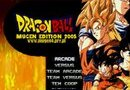Dragon Ball Z MUGEN Edition 2008 picture4