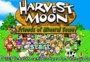Harvest Moon: Friends of Mineral Town picture3