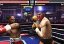 Real Boxing picture7