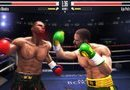 Real Boxing picture8