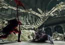 Dark Souls II: Scholar of the First Sin picture2