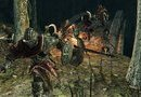 Dark Souls II: Scholar of the First Sin picture4