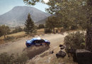 DiRT Rally picture14
