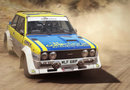 DiRT Rally picture16
