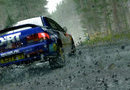DiRT Rally picture2