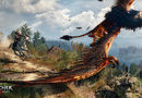 The Witcher 3: Wild Hunt picture1