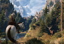 The Witcher 3: Wild Hunt picture4