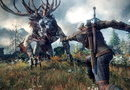 The Witcher 3: Wild Hunt picture6