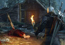 The Witcher 3: Wild Hunt picture9