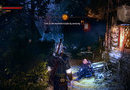 The Witcher 2: Assassins of Kings Enhanced Edition picture24