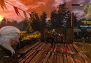 The Witcher 3: Wild Hunt - Hearts of Stone picture14