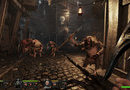 Warhammer: End Times - Vermintide picture6