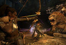 Dragon's Dogma: Dark Arisen picture11