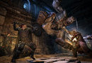 Dragon's Dogma: Dark Arisen picture17