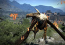 Dragon's Dogma: Dark Arisen picture3