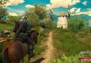 The Witcher 3: Wild Hunt - Blood and Wine picture13