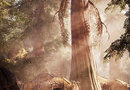 Far Cry Primal picture22