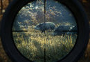 theHunter: Call of the Wild picture12