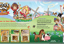 Harvest Moon DS: Grand Bazaar picture2