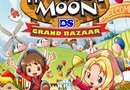 Harvest Moon DS: Grand Bazaar picture4