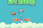 Flappy Bird screenshot 4