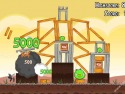Angry Birds picture13
